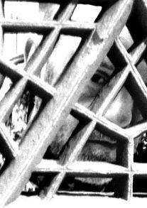 Jacques Bonnaffé, à travers la grille d'un moucharabieh